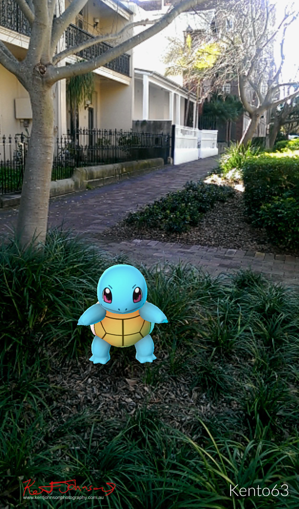 A Squirtle prepares for Pokemon battle outside the 'Pokestop' at Gallery 9  in Darlinghurst.