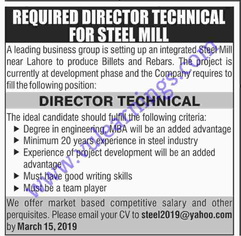Job in steel mill Director Technical