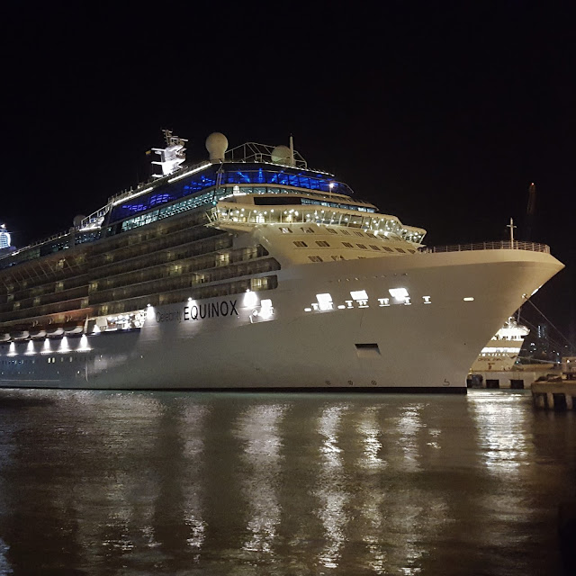 Celebrity Equinox at Night