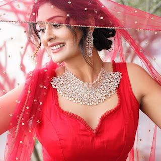 Actress Payal Rajput New Glam Photoshoot Pics