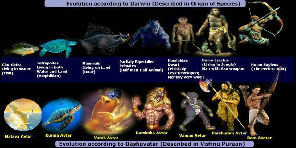 How Does Darwins Theoies Of Natural Selection Contradict Biogeography