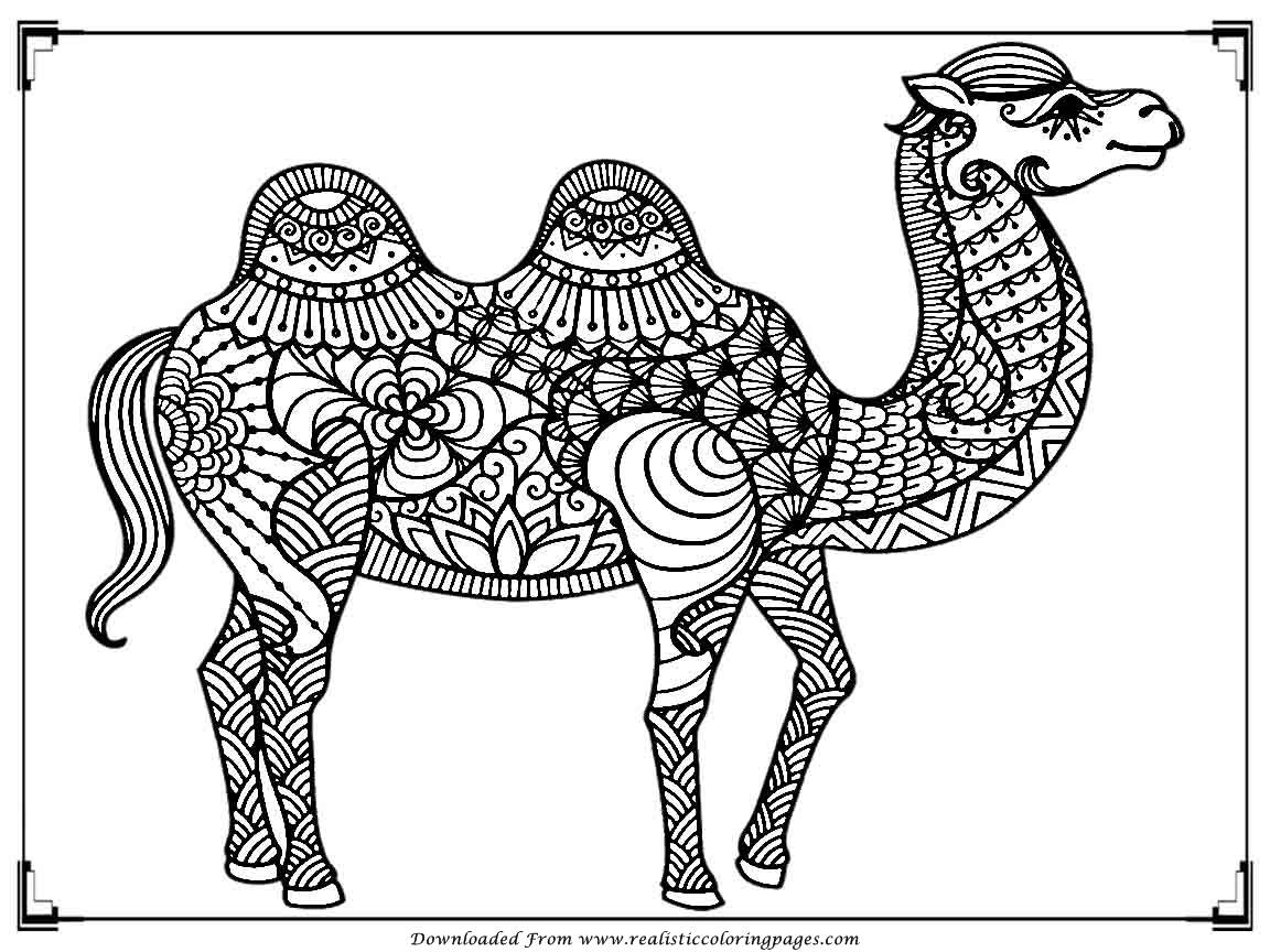 cesious coloring pages - photo #32