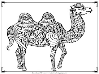 camel coloring pages for adults