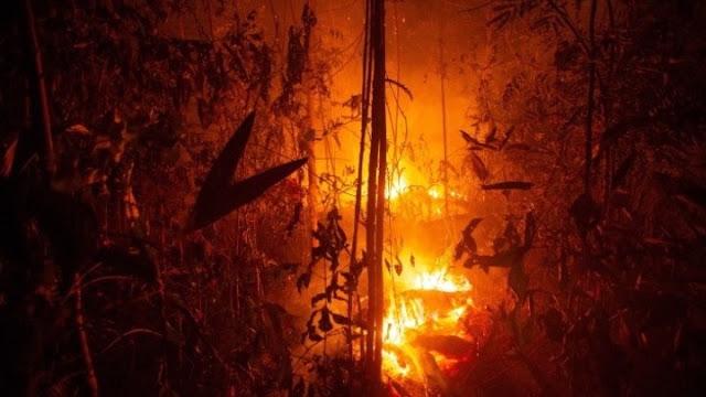 Αμαζόνιος: Πυρκαγιές καίνε δάση και απειλούν κατοικίες