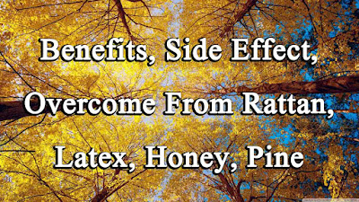 Benefits, Side Effect, Overcome From Rattan, Latex, Honey, Pine