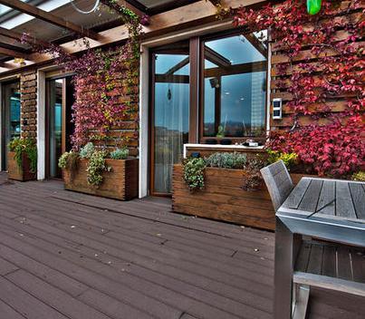 Fotos de terrazas terrazas y jardines decoracion de for Decoracion jardines pequenos frente casa