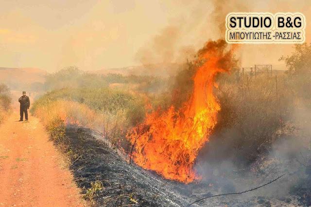 Πυρκαγιά στην Αργολίδα