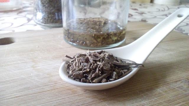 Como preparar extracto de valeriana en frío para semilleros y trasplantes