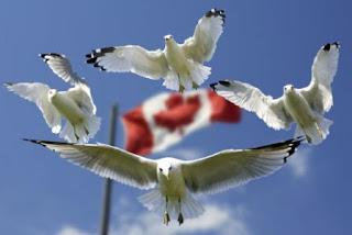 Melihat Perekonomian Kanada, salah satu negara terluas di dunia