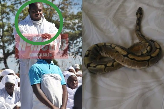 fake prophet plants snakes people homes