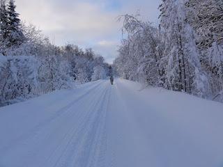 Охотник зимой на охоте