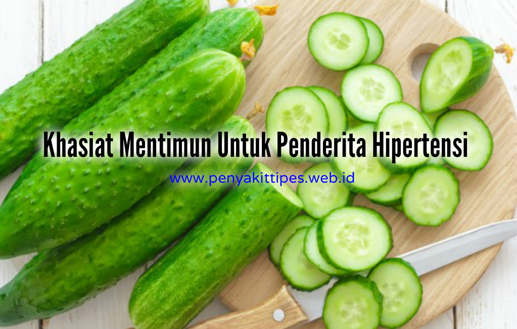 Khasiat Mentimun Untuk Penderita Hipertensi