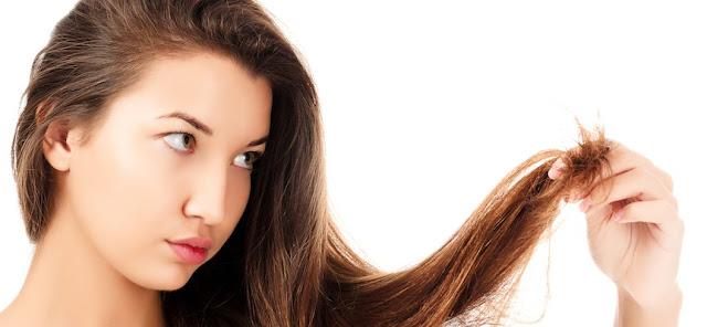 bercabang, rambut bercabang, cara mengatasi rambut bercabang, cara menghilangkan rambut bercabang, cara merawat rambut bercabang, tips alami rambut bercabang