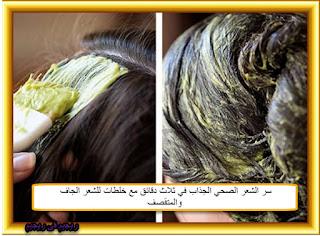 سر الشعر الصحي الجذاب في ثلاث دقائق مع خلطات للشعر الجاف والمتقصف