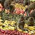 Tổ chức tiệc buffet dành cho khỉ độc nhất trên thế giới được tổ chức tại Thái Lan