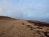 Beach Northumberland