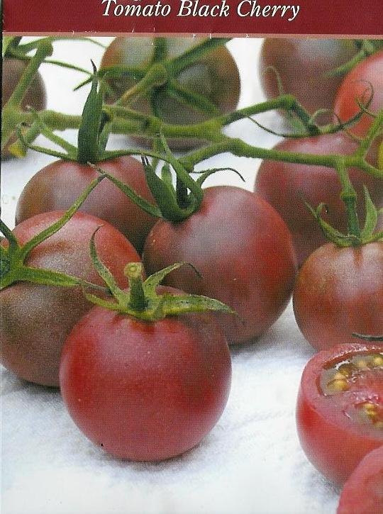 Musta Tomaatti
