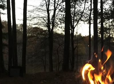 fire forest multiplied needtobreathe