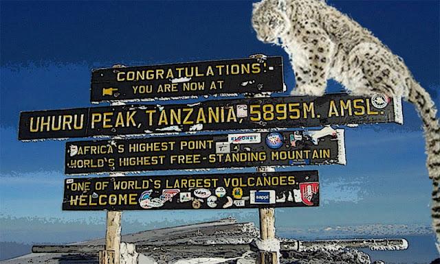 El Kilimanjaro, atestado
