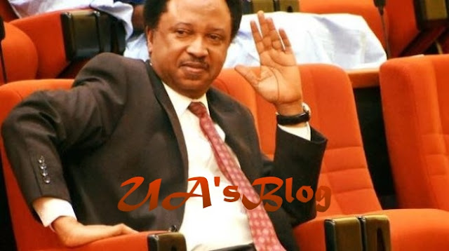 Why I Exposed Senators' Salaries – Shehu Sani