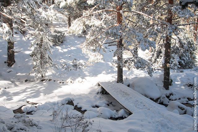 Ruta senderismo nieve raquetas Madrid Guadarrama Cotos Cerradillas RV9