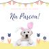 O perigo da Páscoa para os cães
