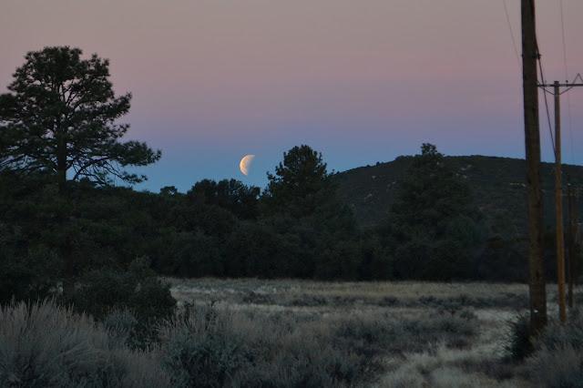 setting blue moon
