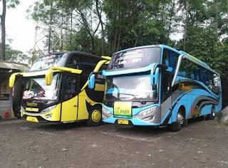 Sewa Bus Pariwisata Jogja Seat 52