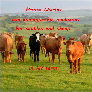 Prince Charles use homeopathic medicines for cattles and sheep in his farm