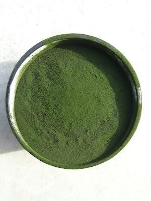 un bol contenant de la Chlorella en poudre