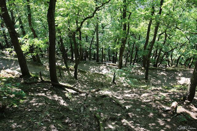 Stadtlandeltern - Wandern - Eifel - Traumpfad - Höhlen - Schluchten - Wasserfall - Wolfsschlucht
