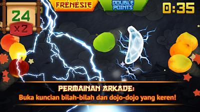 Fruit Ninja V2.3.5