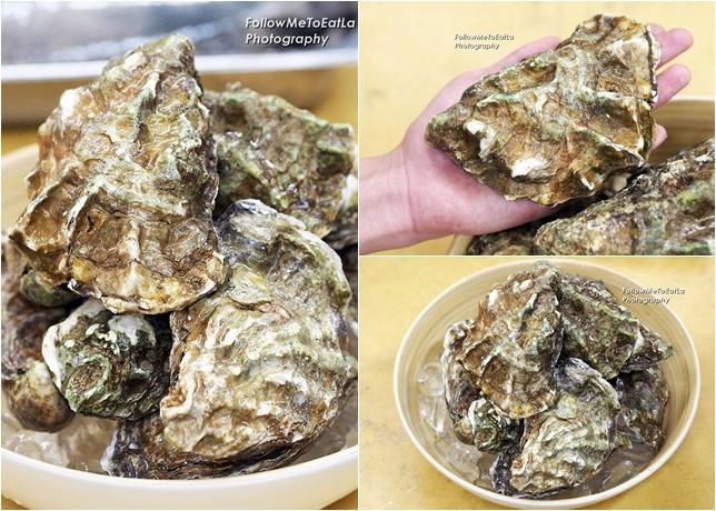 Fresh Oyster from Australia