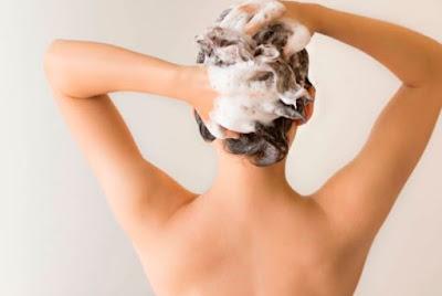Sampo Organik Perawatan Alami Rambut Sehat dan Lebat