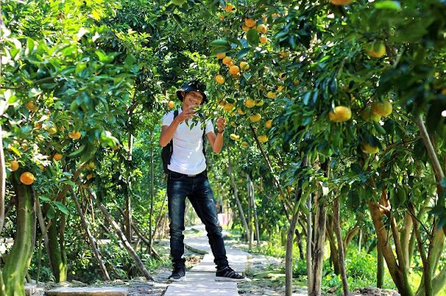Lai Vung Mandarin Garden 2