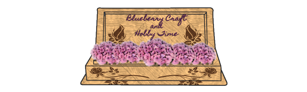Blueberry Craft and Hobby Time