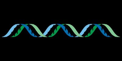 contoh gen