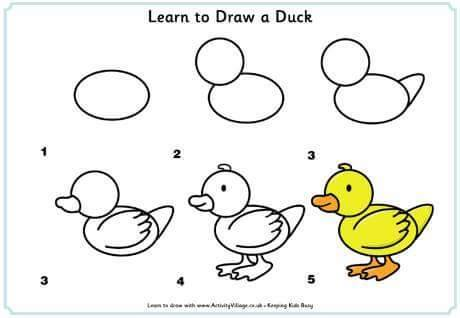 Learn to draw a duck for kids 2