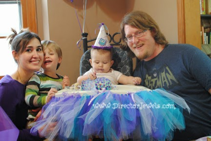 Baby Girl Purple and Teal Turquoise First Birthday Owl Party www.directorjewels.com, High Chair Tutu