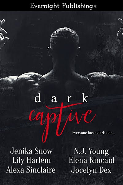 Dark Captive Anthology