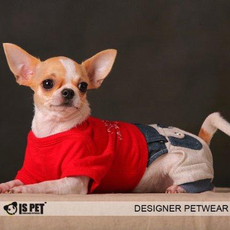 Chihuahua Piers Paris Jumper   Teacup Chihuahua Clothes