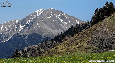 καλιακούδα ευρυτανίας βουνό χιονούρες