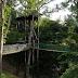 Borneo Ant House Tuaran Sabah: Opening Hours & Entrance Fees