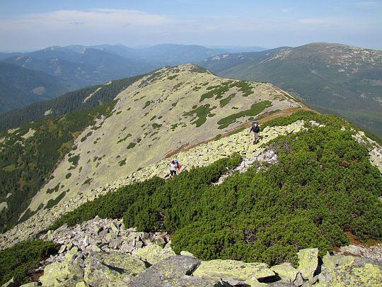 Widok na szczyty: Łopuszna (ukr. Лопушна; 1722 m n.p.m.) i Borewka (ukr. Боревка; 1596 m n.p.m.).