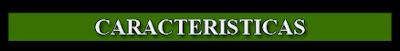 Caracteristicas TradeTacker