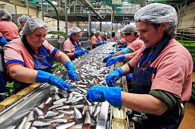 кладете эту сахком работа для моркови морские професии надо себе