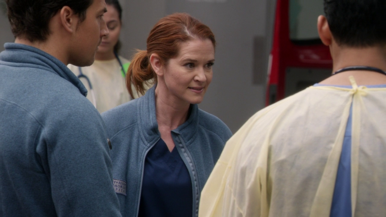 Grey's Anatomy 14x16 Caught Somehwere in Time