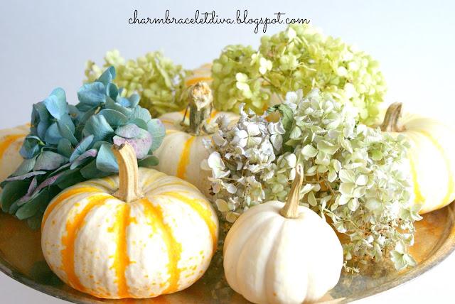 yellow stripe pumpkin baby boo pumpkin dried hydrangeas