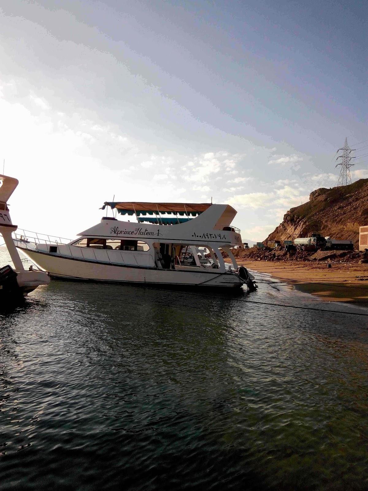 تصويرى : مرسى لنشات الصيد بالعين السخة (32صورة)