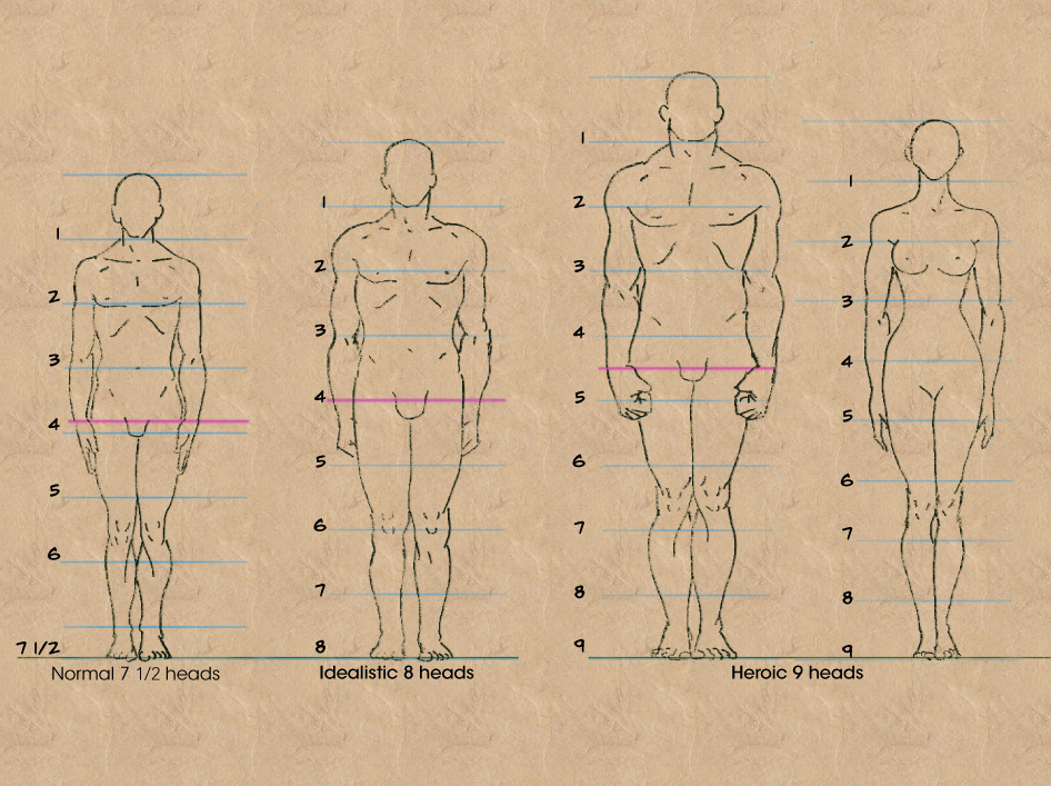 Just Create: What Are The Ideal Body Measurements?